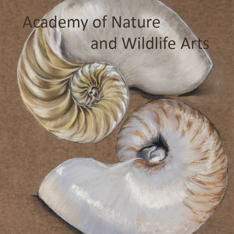 Academy of Nature and Wildlife Arts